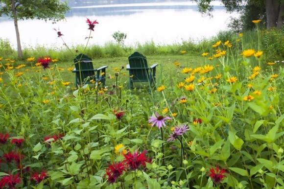 Lake view with adirondack chairs