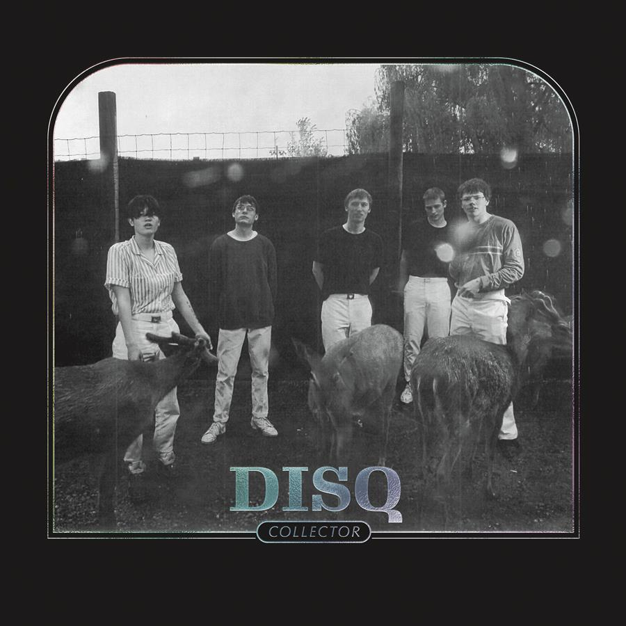 Disq album artwork