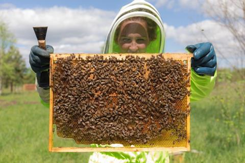 A young woman beekeeper is holding