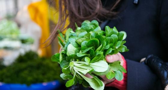 1 große Handvoll Feldsalat