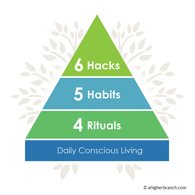 Diagram of the daily conscious living module